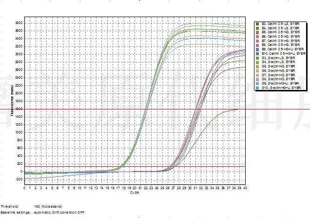 原代细胞培养服务:原代细胞分离培养鉴定以及检测等整体课题服务